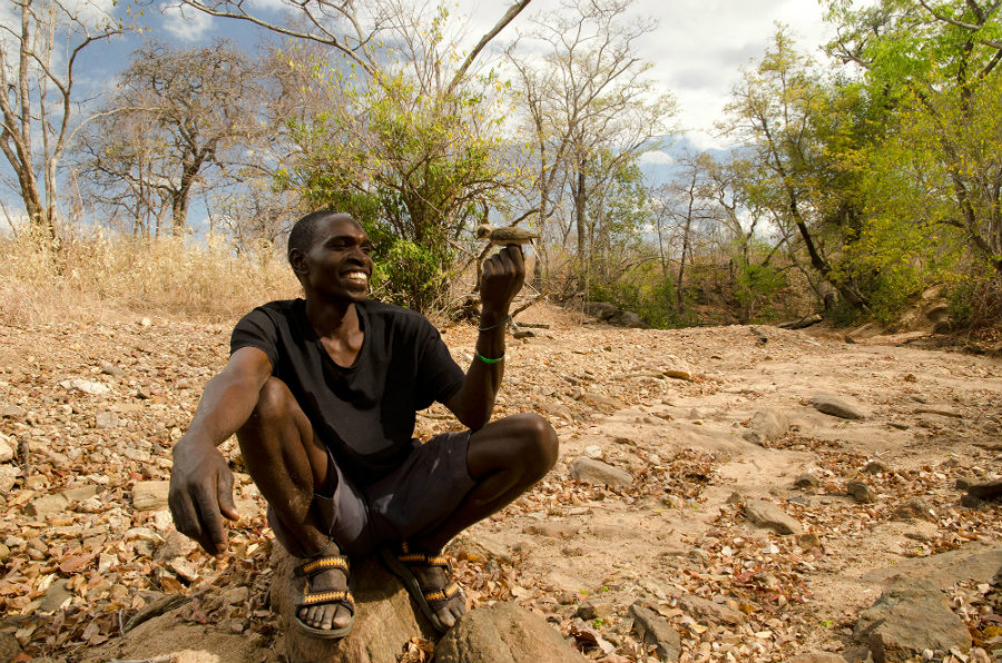 Humans and birds have been working together to find food in Africa for many years, which allow them to learn how to communicate. Photo credit: Claire Spottiswoode / WUWM