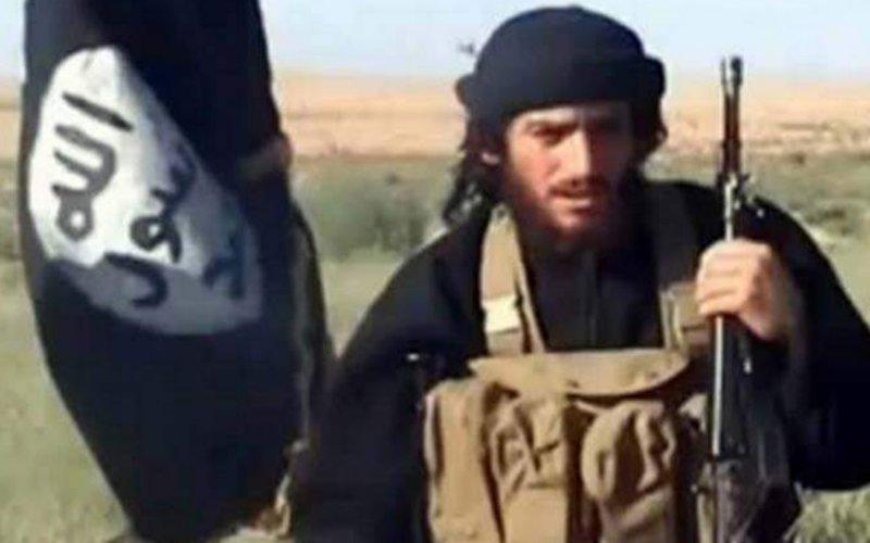 Abu Mohammed al-Adnani, ISIS