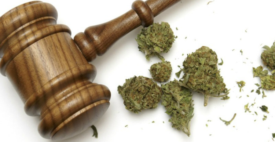 Governors want to protect pot from federal government law enforcement on marijuana
