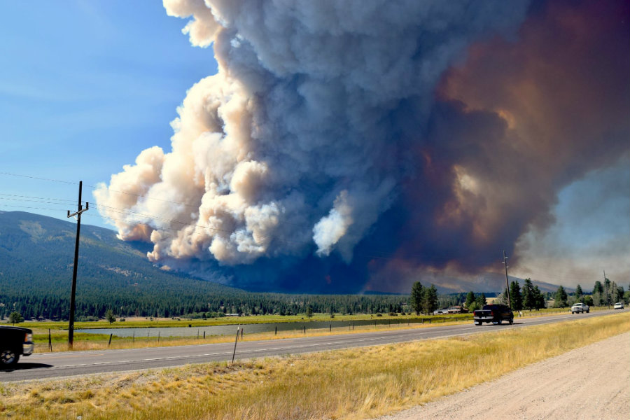 """A great fire called the """"Roaring Lion fire"""" because  it started near the Roaring Lion Road in Hamilton, Montana, has burnt 14 housed and around 500 have been evacuated. Photo credit: Courtney Ferguson / KTVQ"""