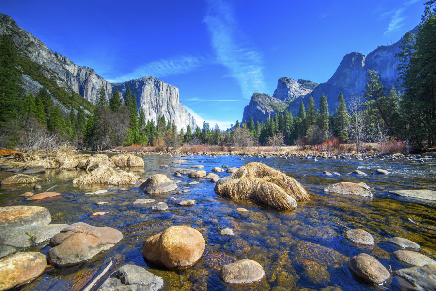 To celebrate the 100th anniversary of the National Park Service, President Obama is inviting everyone to join him on a virtual reality tour of Yosemite National Park. Photo credit: History