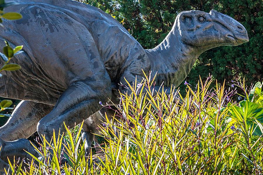 dinosaur-arthritis