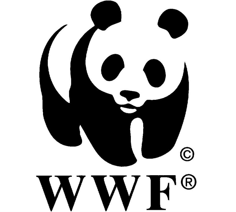WWF stated that from 1970 to 2012, 58 percent of wildlife population has decreased. Photo credit:  K4health.org