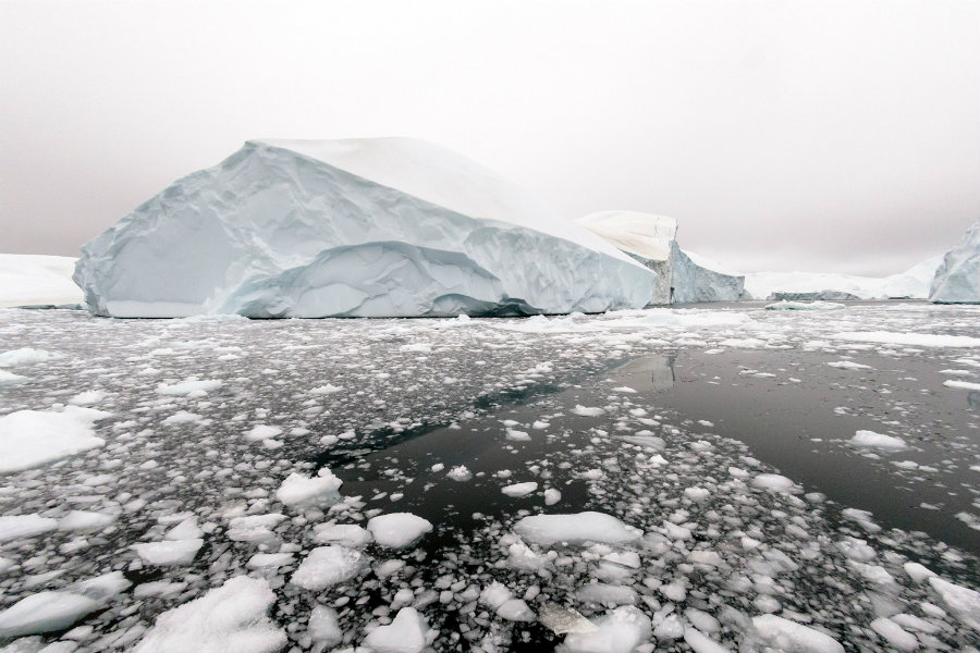 The Arctic sea ice has melted as consequence of the climate change. Photo credit: Carbonbrief.org