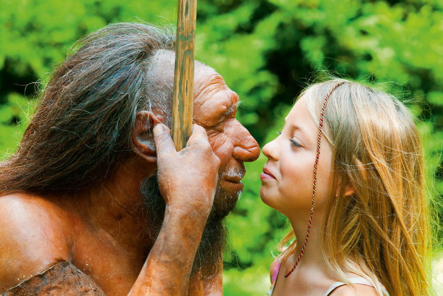 Experts have discovered a lack of Neanderthal genes in the modern human anatomy. Photo credit: Neanderthal Museum / From the Grapevine