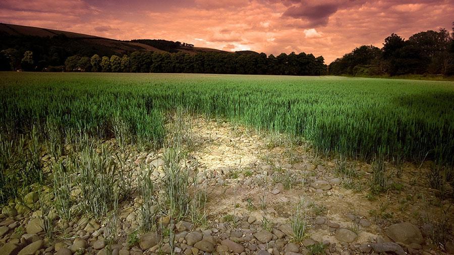 earth-soil-carbon
