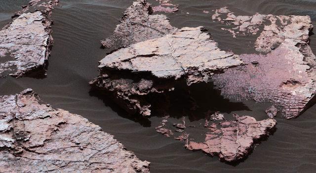 mars-mud-cracks