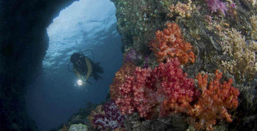 The archipelago of Raja Ampat is part of the Coral Triangle. Image credit: The Nature Conservancy
