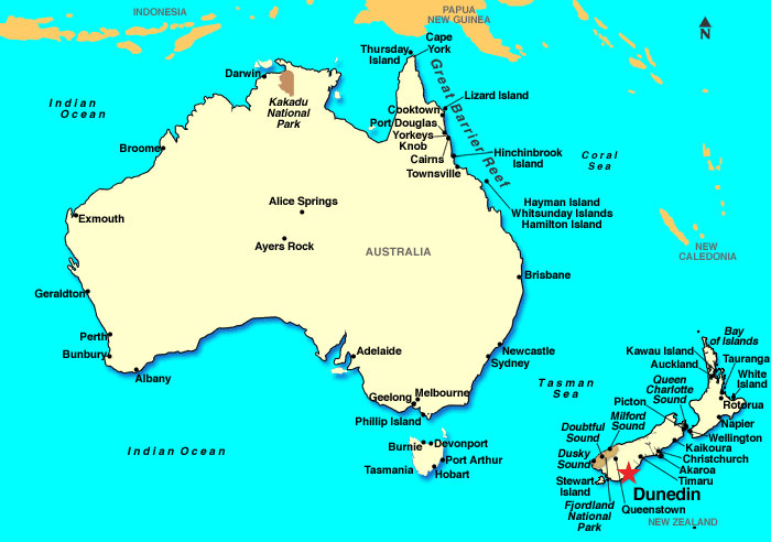 dunedin-island-australia