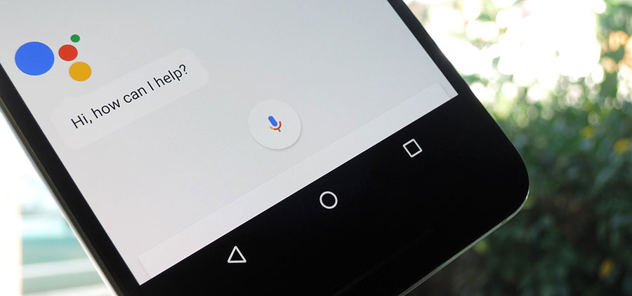 google-assistant-trends