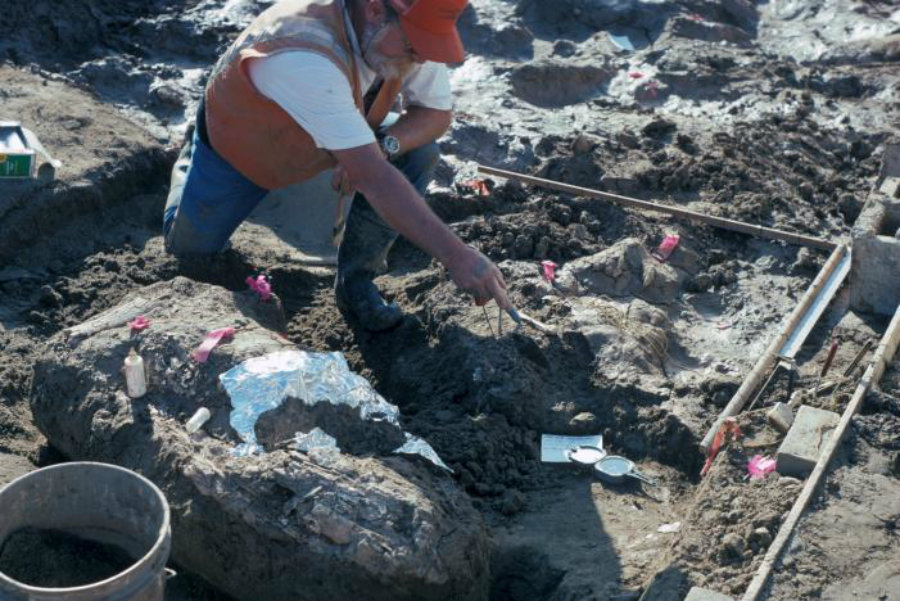 Archaeologists found new evidence that suggests the possibility of ancient hominids living in the state of California at least 130,000 years ago. Image credit: San Diego Natural History Museum / Handout via Reuters