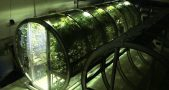 NASA scientists designed an inflatable cylinder greenhouse that could help astronauts grow food when arriving at other planets. image credit: Designboom