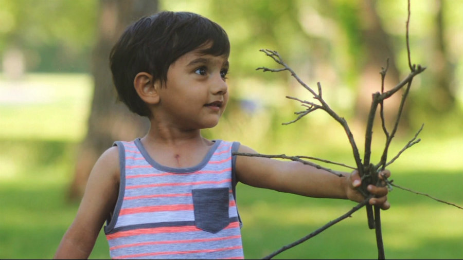 2-year-old Ethan Chandra. Image credit: Erie News Now