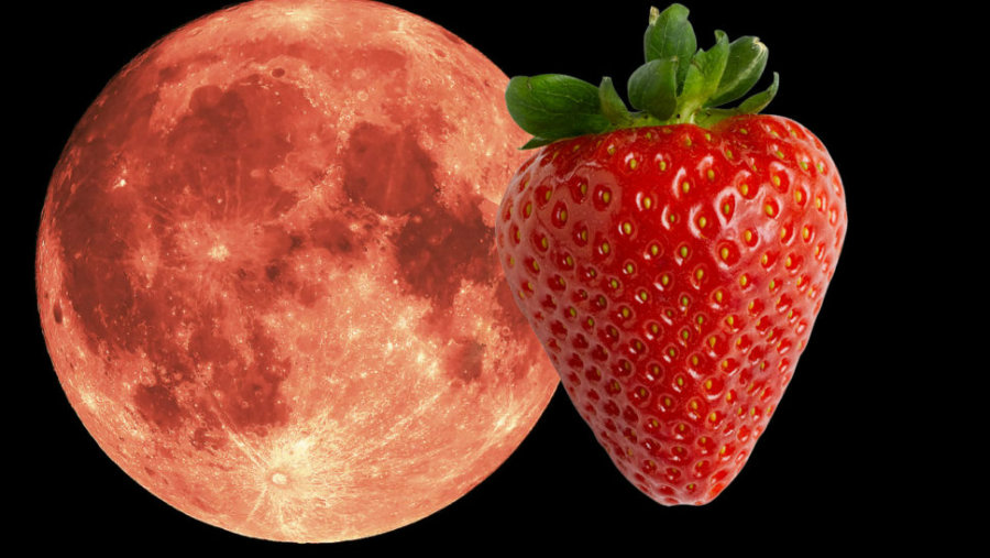 """The Strawberry """"Minimoon"""" shines with Saturn tonight. Image credit: St George News"""