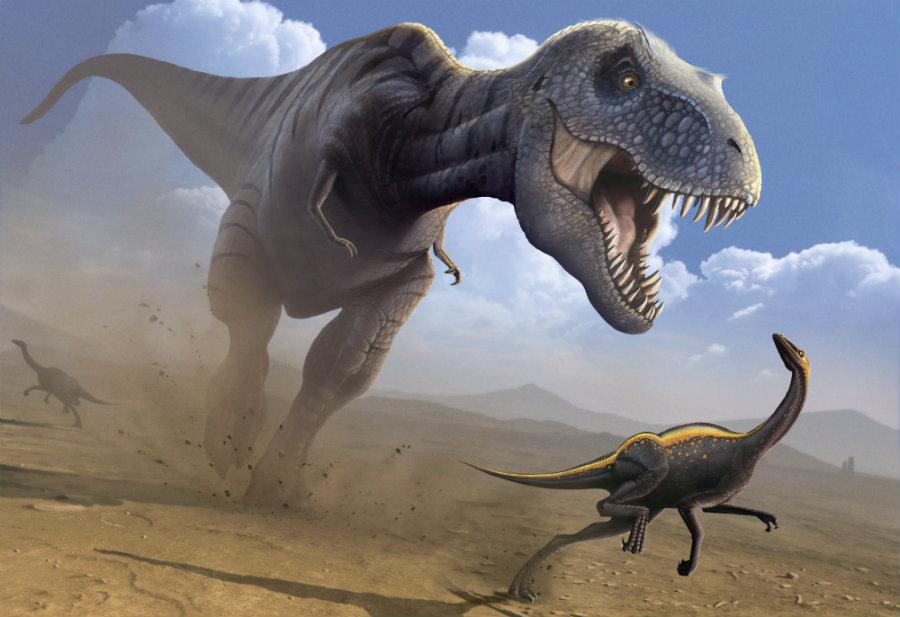 Image credit: Dinopedia.wikia.com