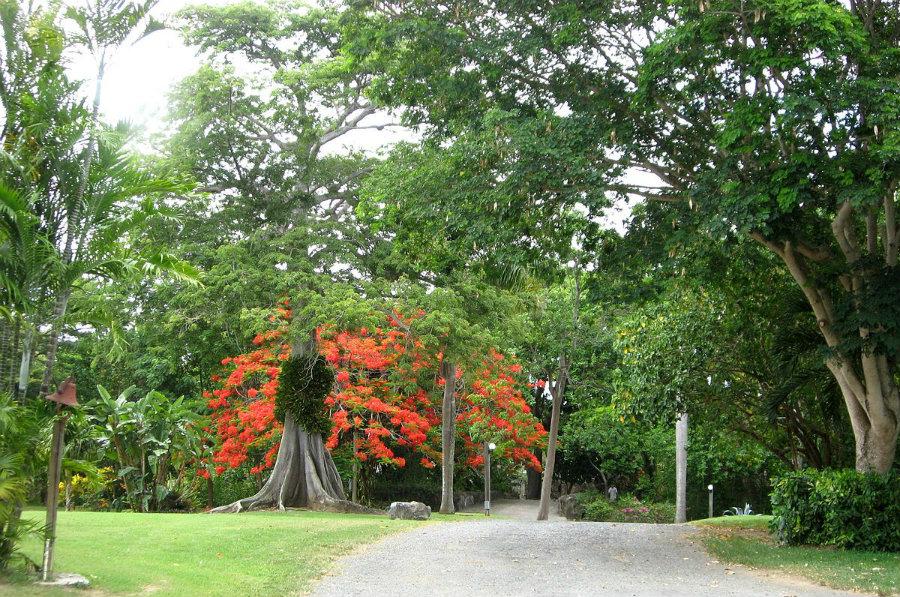 St. George Village Botanical Garden. Image credit: Jason P. Heym / Wikipedia