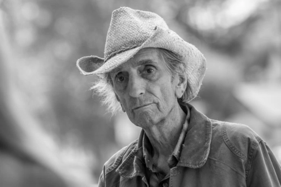 Harry Dean Stanton. Image Credit: IndieWire