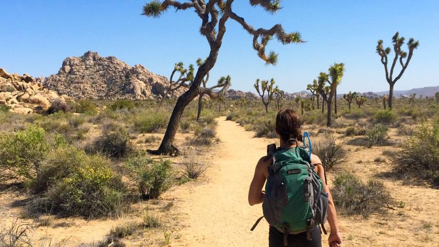Missing hikers Joshua Tree, Joshua Tree National Park murder suicide, Joseph Orbeso