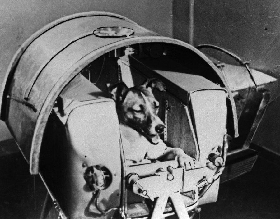 Soviet Union, Sputnik 60 year Legacy, Laika Sputnik 2