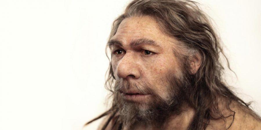 Neanderthal vs Homo Sapiens, Neanderthal similar modern human, Neanderthal Homo Sapiens encounter