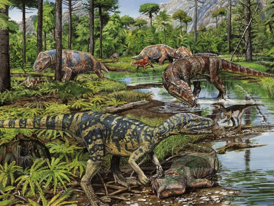 Mammals in Mesozoic, Mammals and dinousaurs, Mesozoic Era