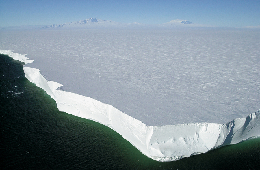 Antarctica's Ross Ice Shelf, Wildlife underneath the shelf, Light passing through the shelf