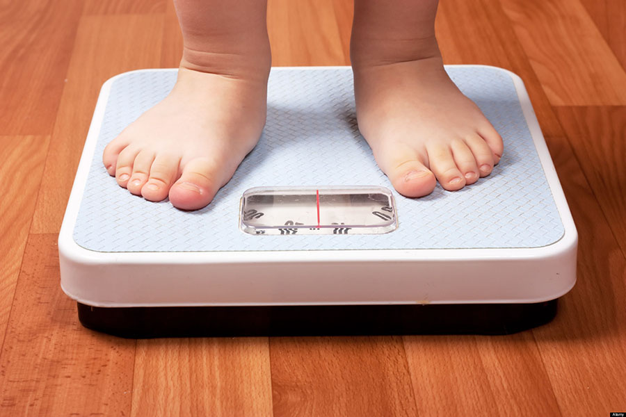 Obesity among children, Harvard University, Obesity in the US, Children obesity in the United States, Rates of obese children in the world