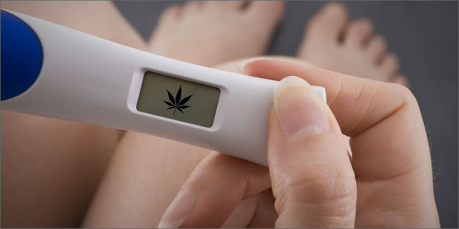 Pregnant women consuming pot, California legal marijuana, Kaiser Permanente