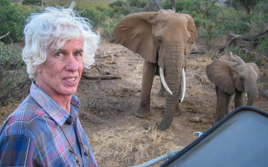 Ivory trade, Kenya, Esmond Bradley Martin, United states of america
