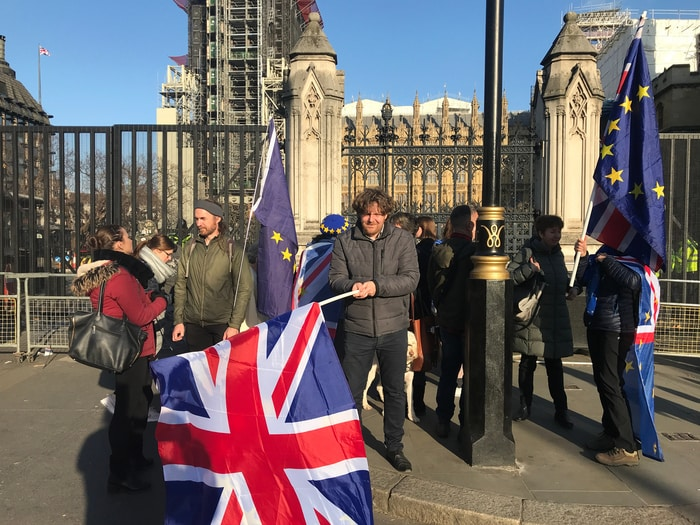 UK EU Flag & Protest