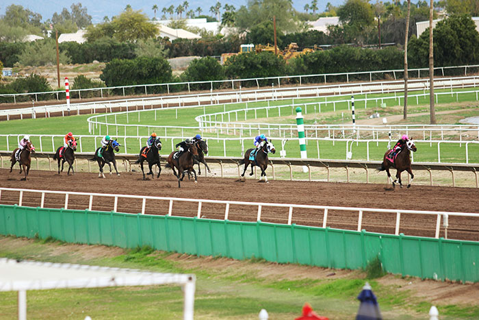 Put Some Brains Behind Your Racing Bets with Some Simple Tips