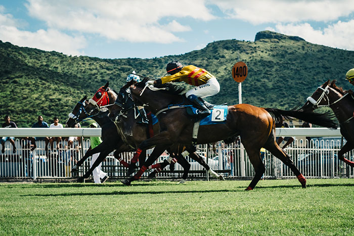 Focusing on the Finer Details of Horse Racing
