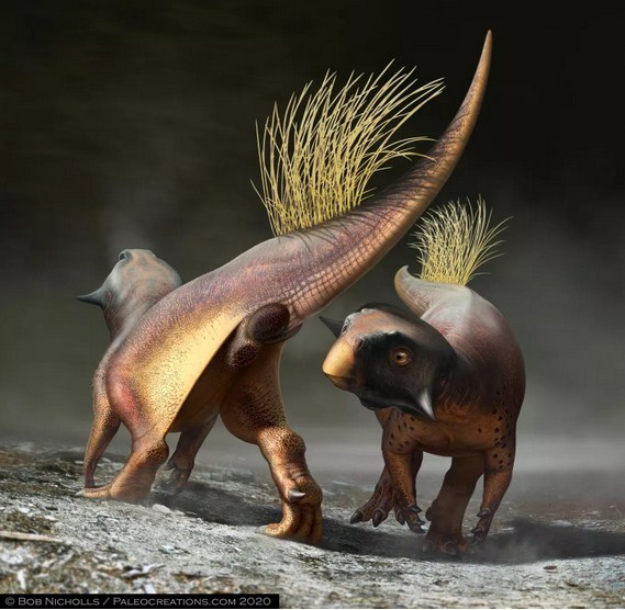 Paleontologists Get a Rare Glimpse into the Butt and Cloaca of a Dinosaur