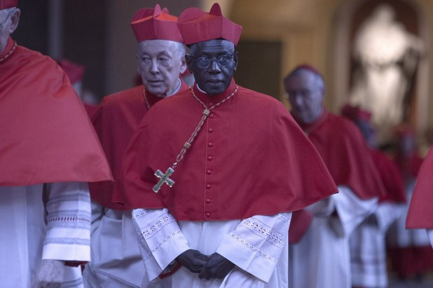 Pope Francis Approves Resignation of African Cardinal Robert Sarah Who Is Considered Future Pope