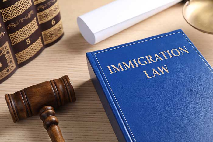 Immigration Rights in the USA